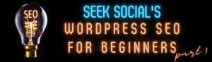 On the left, a light bulb with the illuminated filament reading 'SEO'. To the right Text in neon lighting reading 'Seek Social's WordPress SEO for Beginners - Part 1'