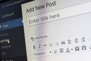 close up of wordpress' back-end blog editor, the 'Add New Post' heading clearly visible.
